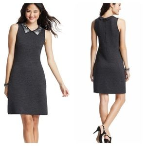 LOFT Pearl Collar Knit Wool Sleeveless Dress